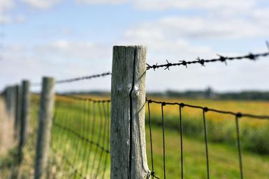 What A Farm Fence Taught Me About Life And Resolutions